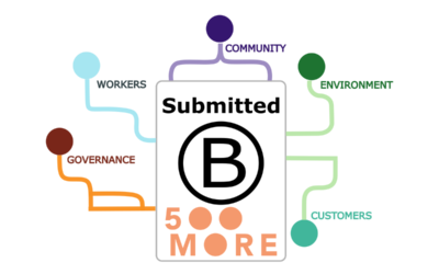 500 More Submit B-Corp Assessment for Review